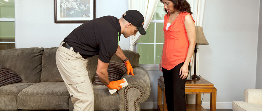 Long Beach, CA carpet upholstery cleaning